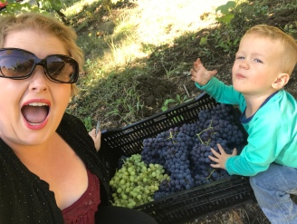 Marty and I picking grapes last summer